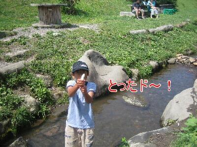 20080811z.jpg