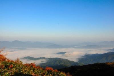 大江山の雲海1