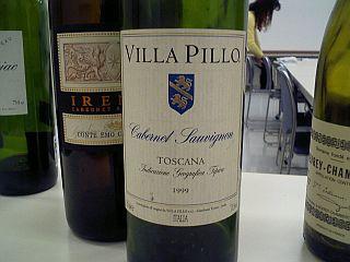 20070114_villapillo.jpg