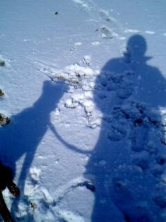 蒼い影 冬