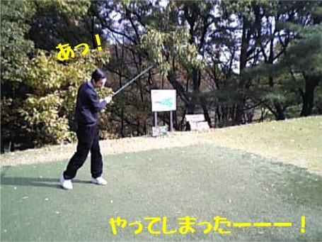 20051122114100.jpg