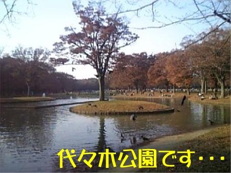 20051128110029.jpg