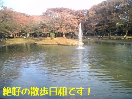20051128110103.jpg