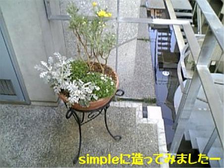 20051205002301.jpg