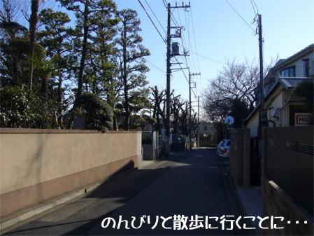 20060205201648.jpg