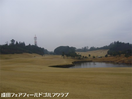 20060321224023.jpg