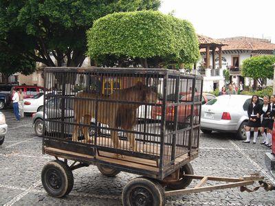 Taxco4.jpg