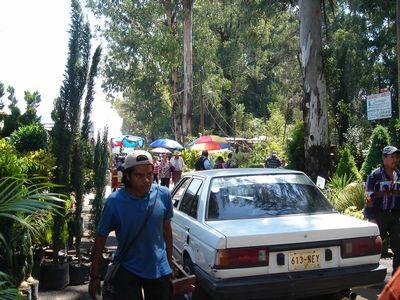 Xochimilco2.jpg