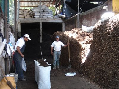 Xochimilco7.jpg
