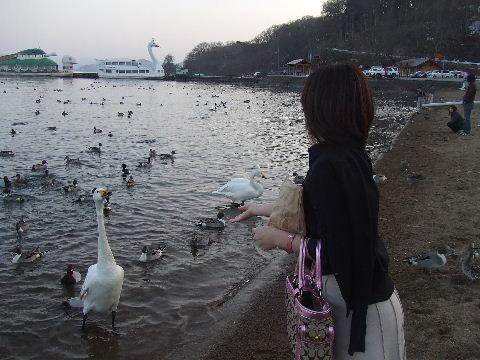 20100330019.jpg