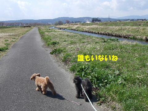 20100424014.jpg
