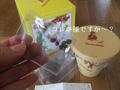 20060927190938.jpg