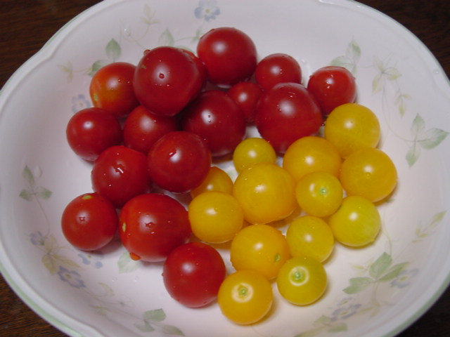 二色のミニトマト