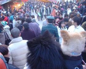 2006.1.2-hatumoude2.jpg