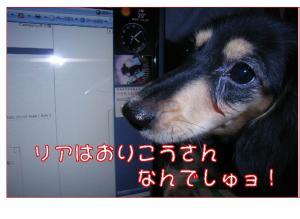 20071110224149.jpg