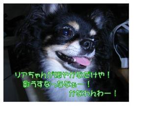 20071208001626.jpg