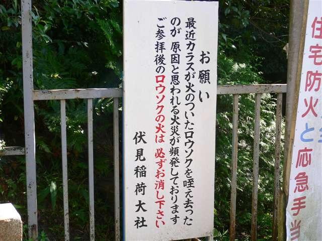 080905_husimi32.jpg