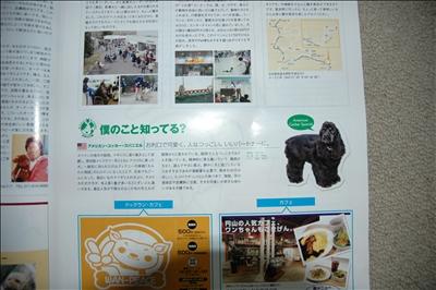 DSC_0002t.jpg
