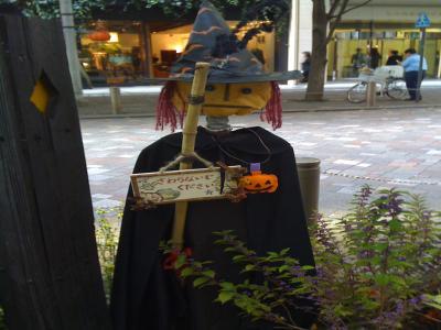 Halloween Garden4