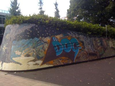 駒沢公園8