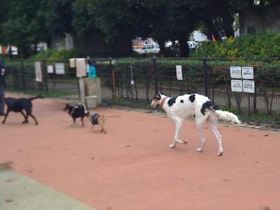 @駒沢公園3