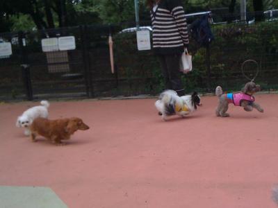 @駒沢公園4