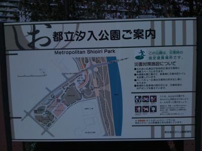 Nov3汐入公園