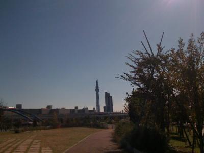 Nov3汐入公園5