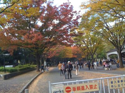 @駒沢公園12