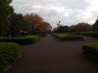 都立中川公園4