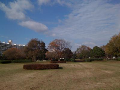 都立中川公園9