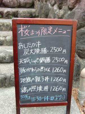 河津桜まつり9