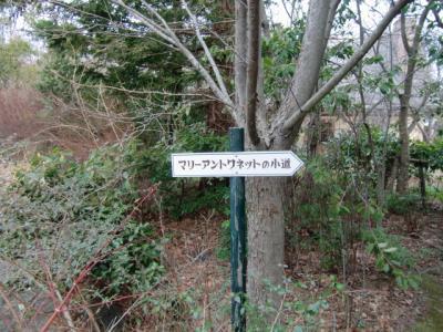 河津バガテル公園8