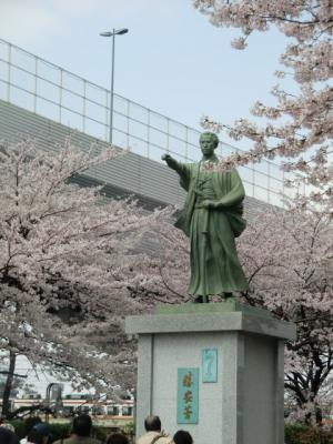 勝海舟と桜