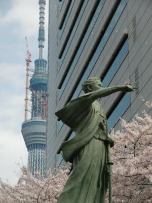 勝海舟と桜2