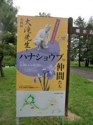 水元公園8