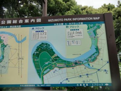 水元公園9