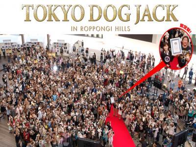 Tokyo Dog Jack_Roppongi Hills16