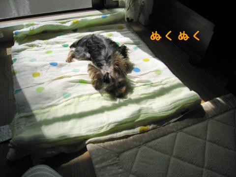 004_20080927203428.jpg