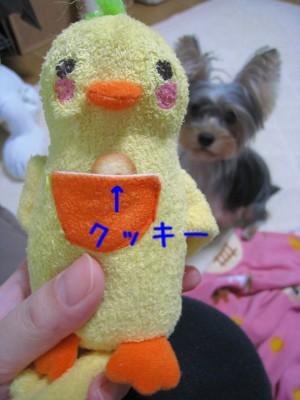 004_20081005202914.jpg