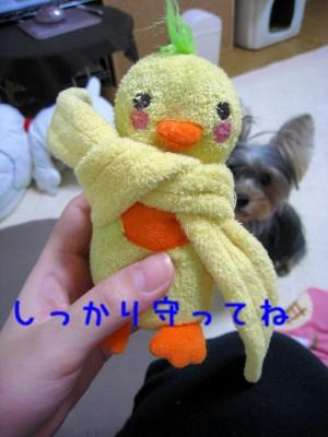 005_20081005202919.jpg