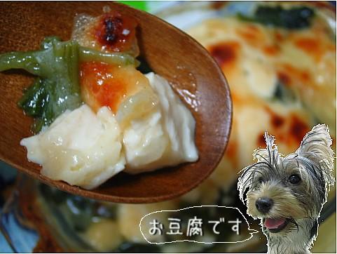 豆腐ざんすIMG_0053