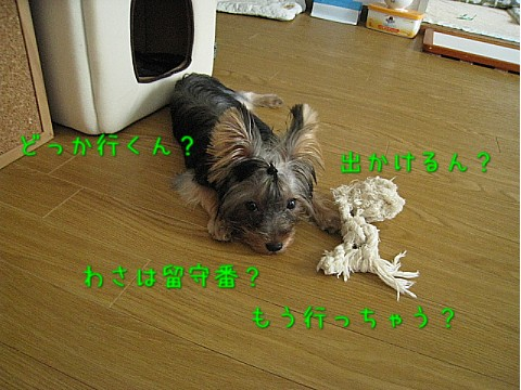 IMG_5654.jpg