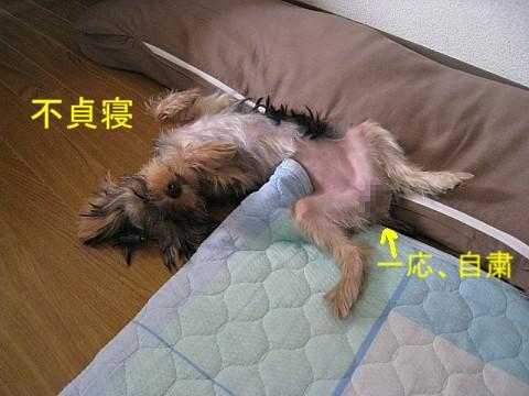 IMG_5979.jpg