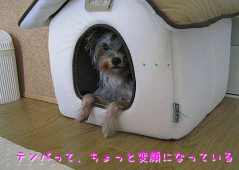 IMG_7570.jpg