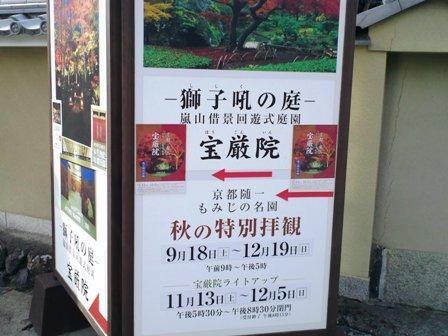 arashiyama3.jpg