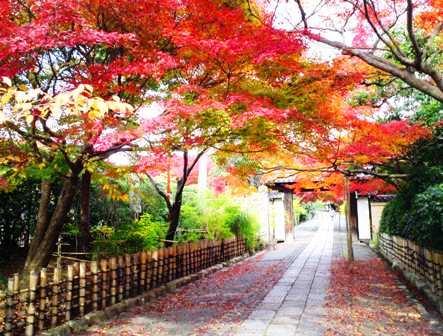 ryouanji33.jpg