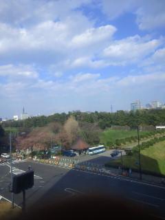 CAI_0012.jpg