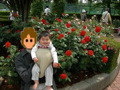 薔薇と笑うK78