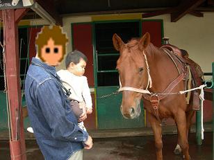 大きな お馬さんと対面。